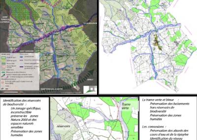 Révision de P.L.U. Prise en compte des enjeux environnementaux – Commune de Noailly (42)
