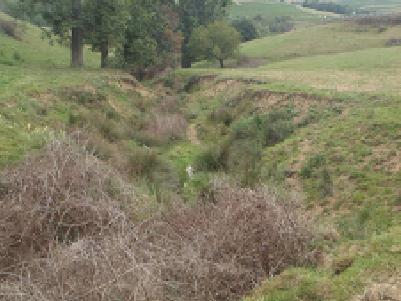 Schéma Directeur de Gestion des Eaux Pluviales du bassin-versant de l'Azergues (69)