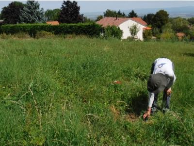 Levée d'ambiguïté sur la présence de zones humides pour les besoins du P.L.U de Chanat-la-Mouteyre (63)
