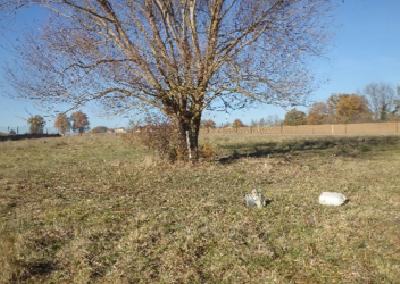 Suivi de la qualité des eaux brutes de la commune de Nuits-Saint-Georges (21)